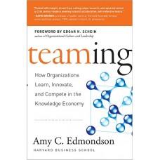 Amy C. Edmondson: Csapatban