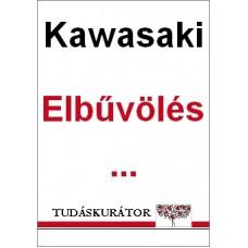 Guy Kawasaki: Elbűvölés